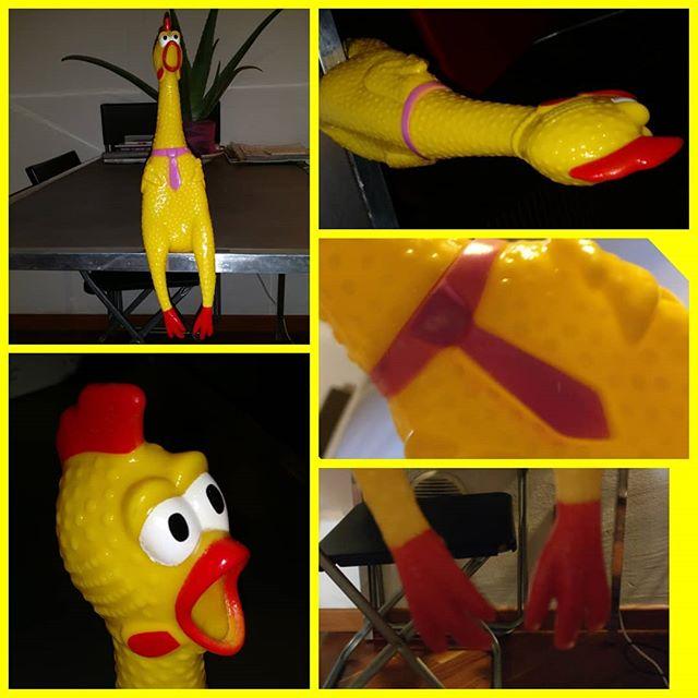 Io sono #174! Io sono un pollo serio, io ho la#cravatta, non sono l'ultimo arrivato!# # # #pollodigomma #rubberchicken #pollo #polli #gomma #rubber #chicken #rubberlover #collezione #collection
