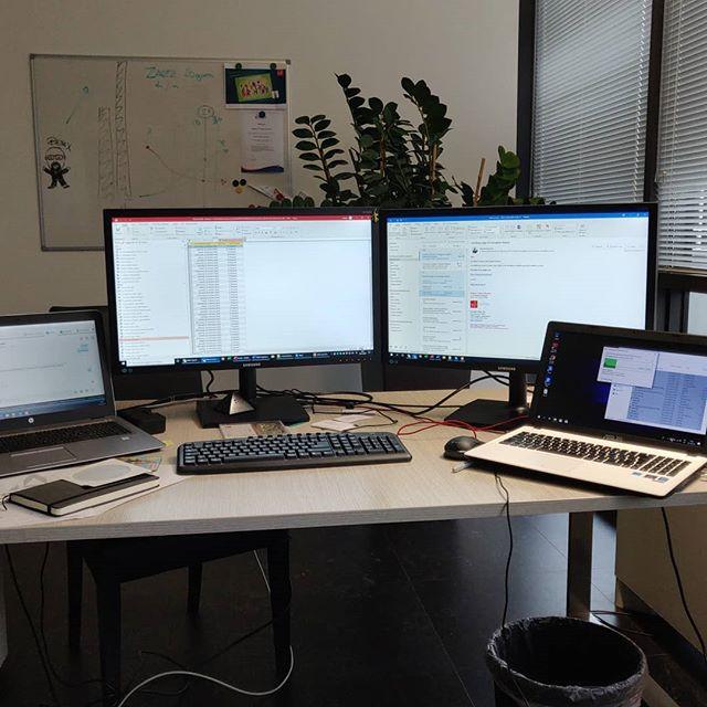 Forse sto esagerando#monitor #pc #screen